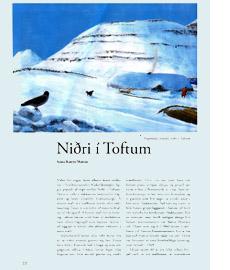 Niðri í Toftum